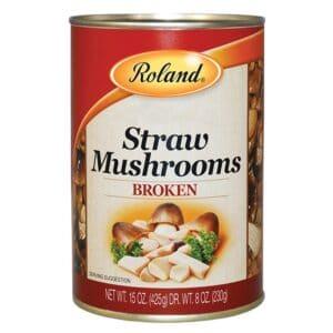 Roland Broken Straw-Mushroom  (84514)